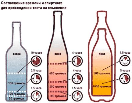 Вывод алкоголя из организма время